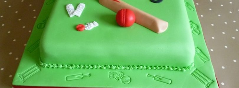 Cricket theme Birthday Party Cakes and Cupcakes